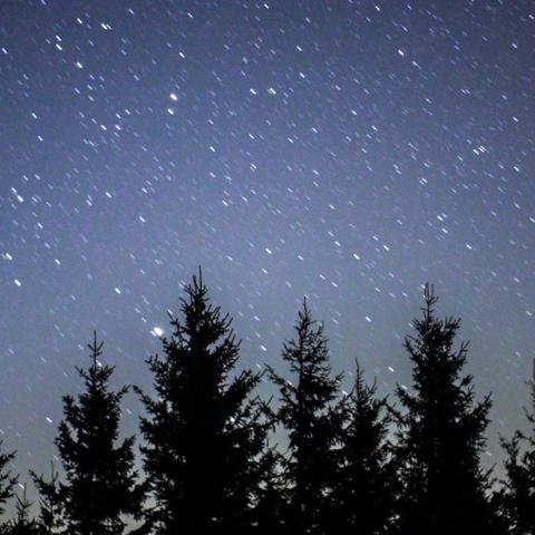 … e le stelle di Santa Lucia  adornano di fantasia  il gioco di ogni bambino,  che fa gioire il suo cuoricino